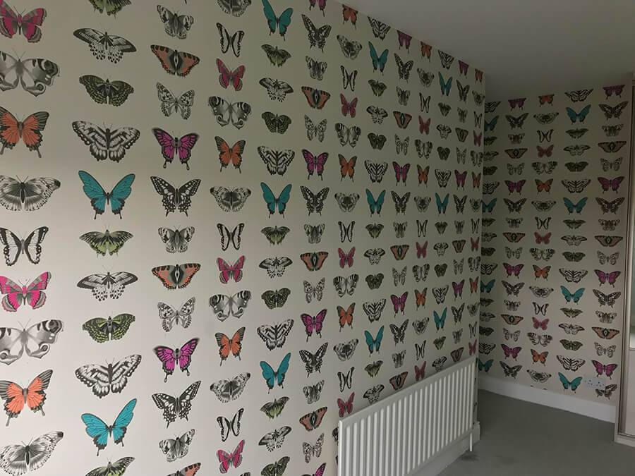 Lynam Painting Ltd - Butterfly Wallpaper Pic 2 (1)