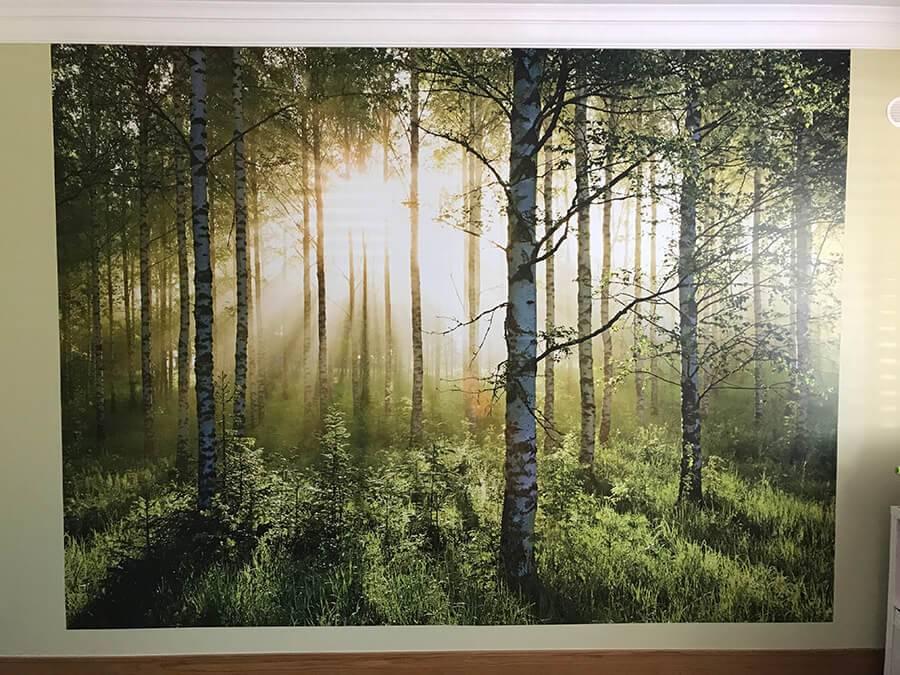 Lynam Painting Ltd - Forrest Mural 3